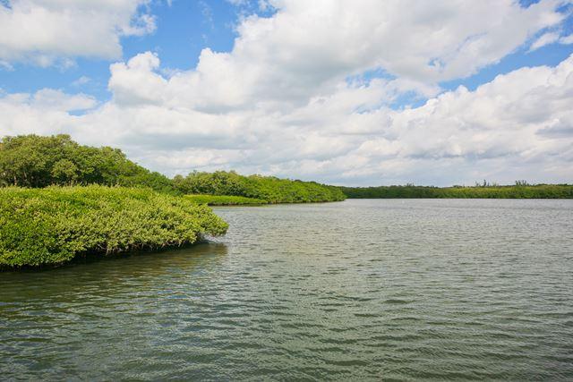 Additional photo for property listing at 4810 Gulf of Mexico Dr, Longboat Key, FL 34228  Longboat Key, Florida,34228 United States